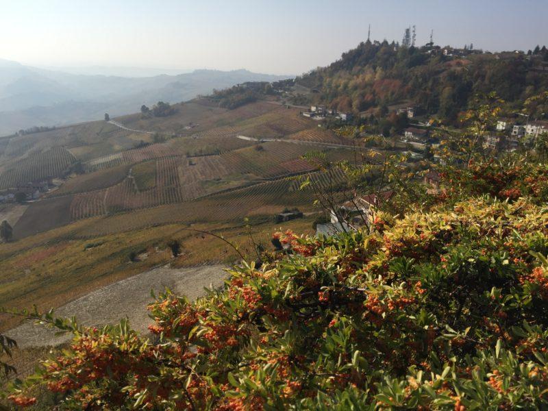 italiainpiega-pieghe meravigliose-itinerari-moto-nord-italia-piemonte 1-langhe 2